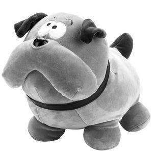 Cachorro-Cinza
